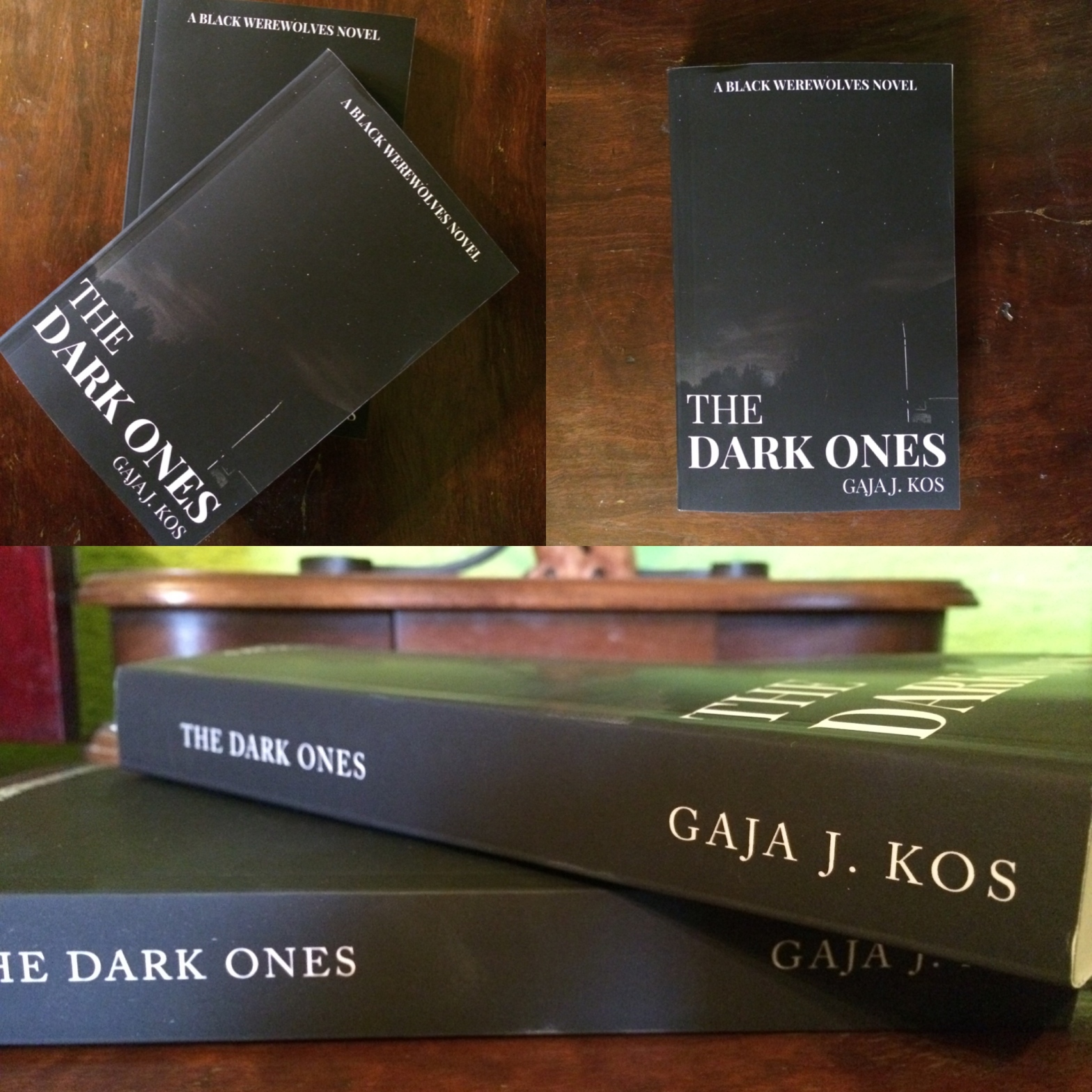 the dark ones gaja jezernik kos